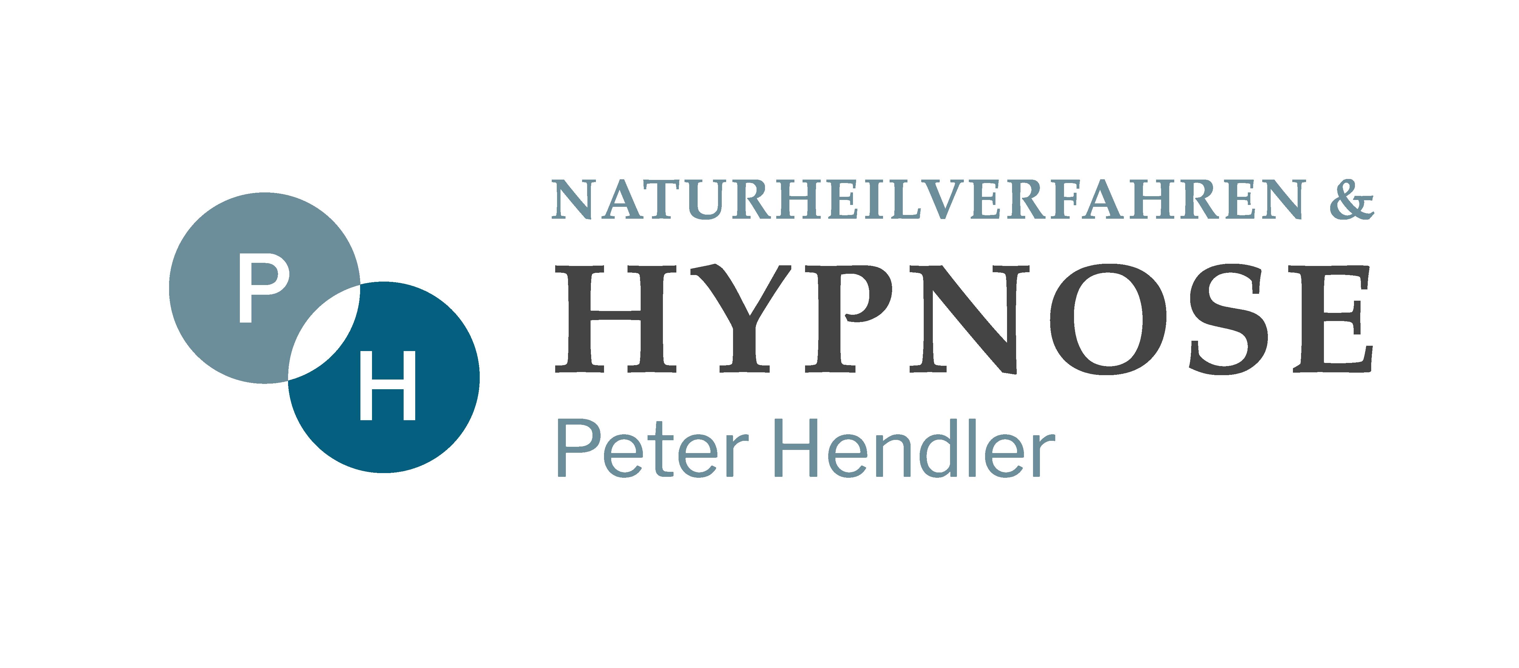 hendler.3wfuture.info